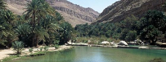560x210px_Wadi1