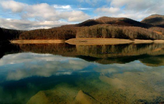 La Selva de Irati es el segundo hayedo-abetal más extenso y mejor conservado de Europa tras la Selva Negra alemana.
