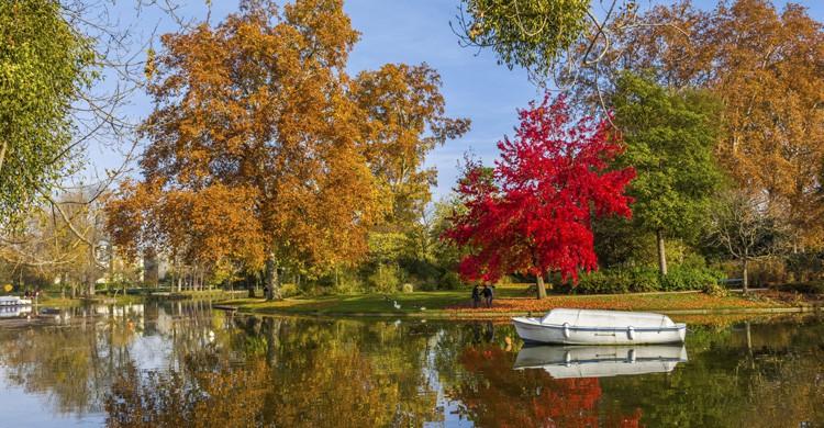 Bosque de Vincennes (iStock)
