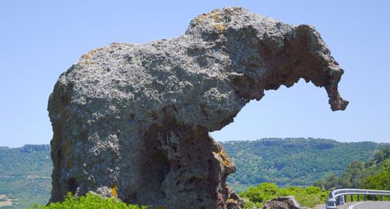 Roca-del-elefante Castelsardo