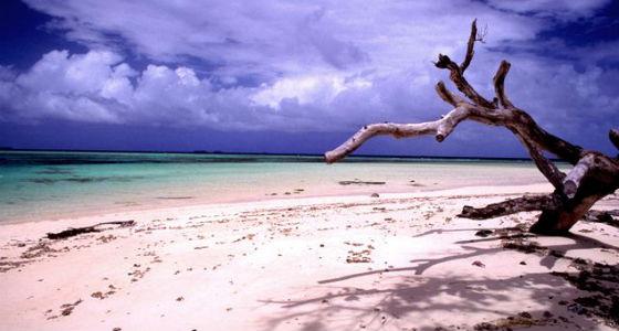 Foto: rpp.com