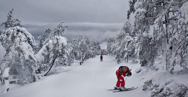 Pista de esquí en Manzaneda. Antonio Tedim (Flickr)