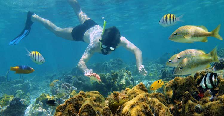 Bocas de Toro es un magnífico lugar para bucear (iStock)