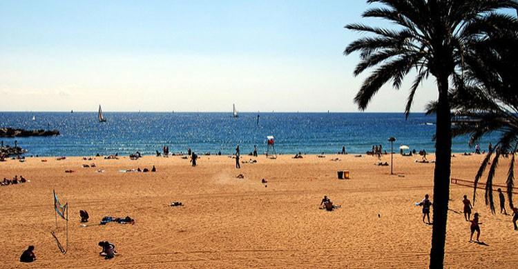 Playa de Barcelona (Flickr)