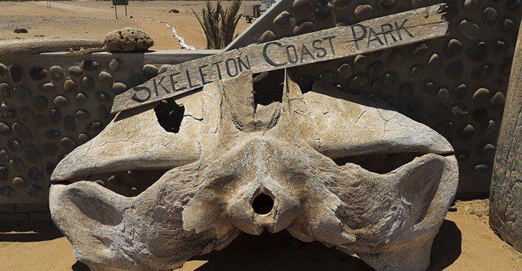 Costa de los esqueletos (iStock)