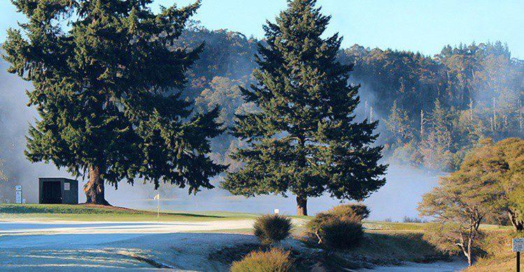 Vapor de agua y gas en el campo de golf (http://rotoruagolfclub.kiwi.nz/)