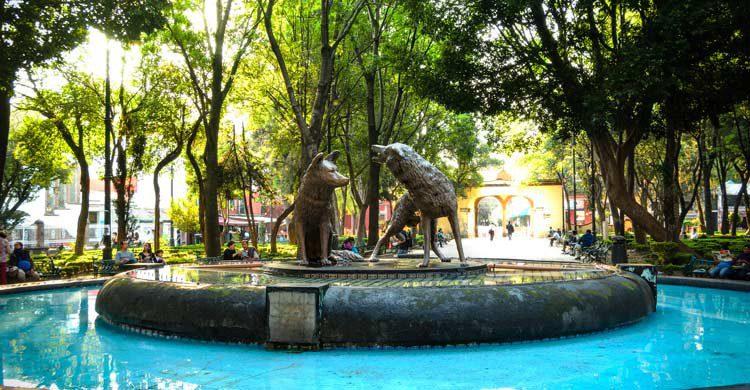 Fuente de los coyotes en los Jardines del Centenario (iStock)