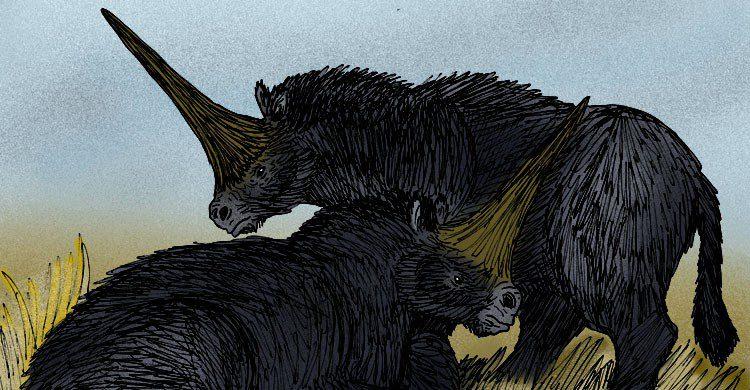 Dibujo de dos Elasmotherium sibiricum o rinocerontes siberianos