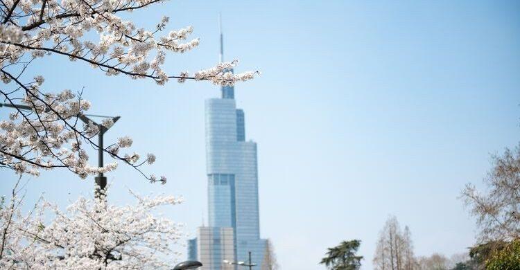 Zifeng Tower, China (istock)