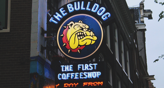 Ámsterdam: The Bulldog
