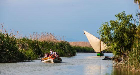Ruta en barca por la Albufera de Valencia. Foto: Fèlix GP