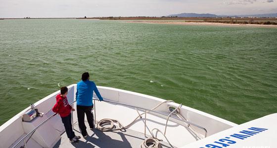 Crucero por el delta del Ebro (Tarragona). Foto: machbel