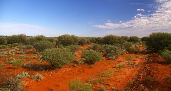 Desierto de Victoria