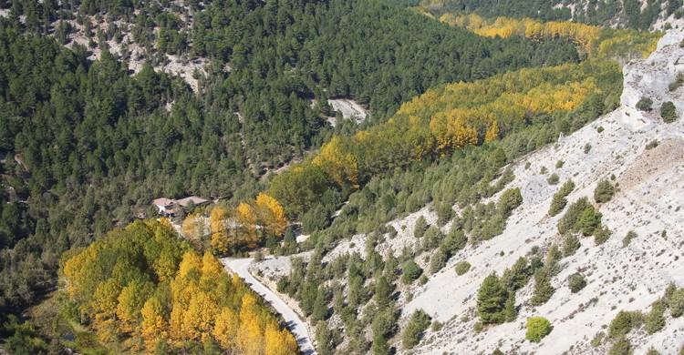 Cañón de Rio Lobos (iStock)