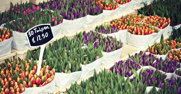 Mercado de Flores (Meg Marks, Flickr)