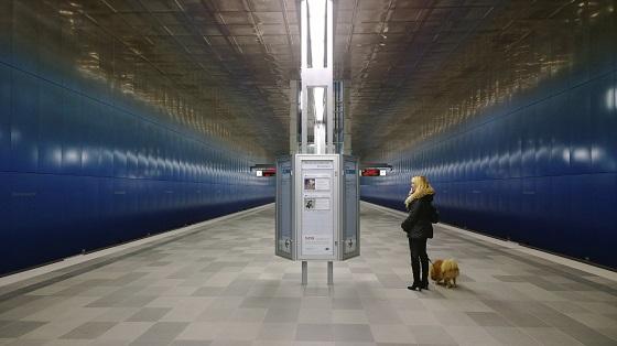 Perro_Hamburgo