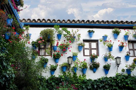 Patios Cordobeses, Cosas que hacer en Córdoba