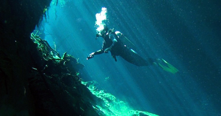 Cenotes / Foto: Yudaev Pavel