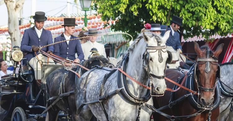 Coches de caballos (iStock)