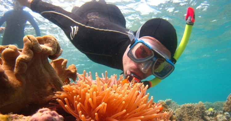 Gran Barrera de Coral / Foto: paularps