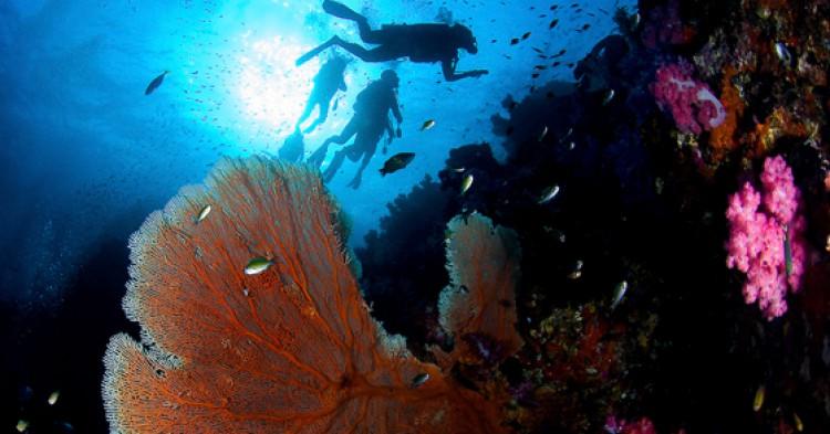 Islas Surin y Similan / Foto: Sunphol Sorakul