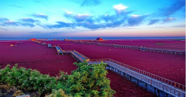 Playa-Roja-Panjin-China