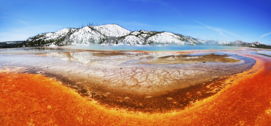 Colorful Yellowstone Spring