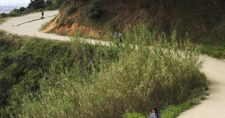 carreterabarcelona