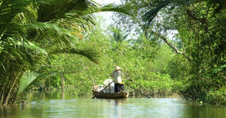 OM-Vietnam