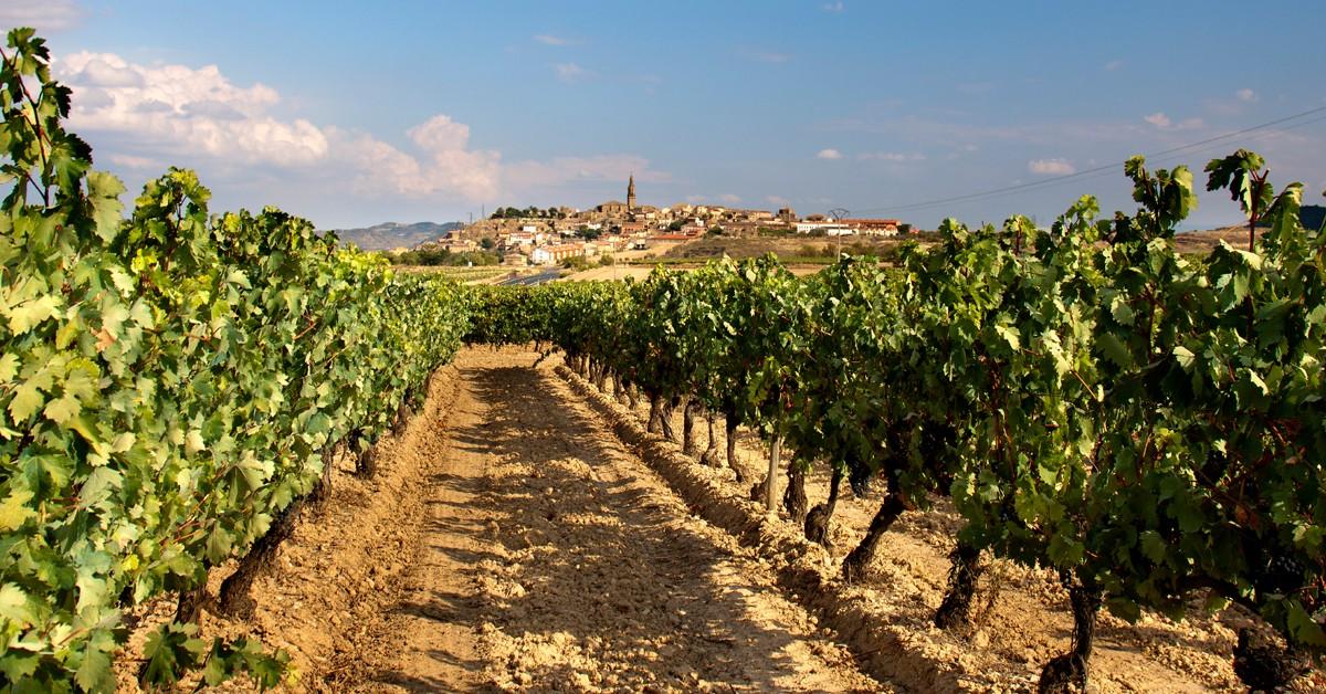 Qu Ver En La Rioja Destinos El Viajero Fisg N