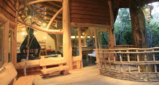 Nidos de Pucón Tree Lodge