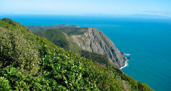 Vista del estrecho de Cook desde Kapiti Island. / Foto: Avenue