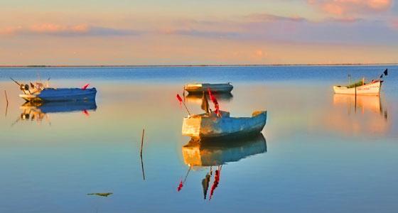 Foto: Apallalu