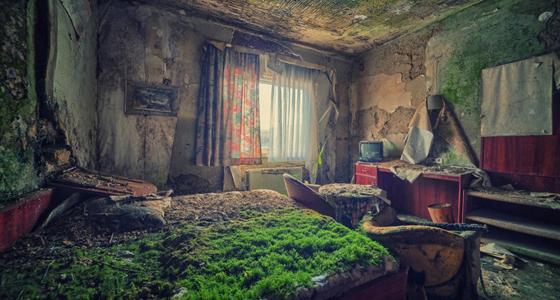 ▻ 10 maravillosas fotos donde la naturaleza ganó a la civilización - El  Viajero Fisgón
