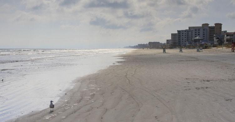 New Smyrna Beach (Flickr)