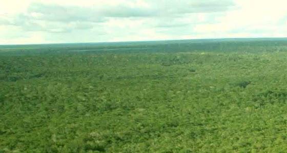 rio-amazonas2