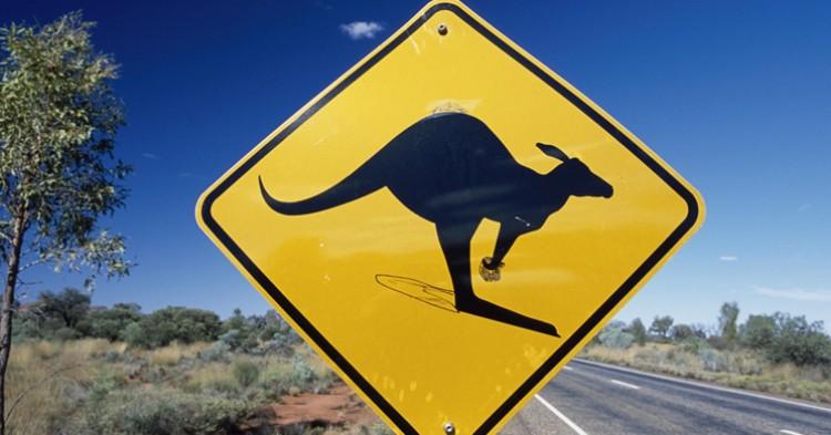 Señal de canguros en Australia. Agrega2 (Ministerio de Educación y Cultura).