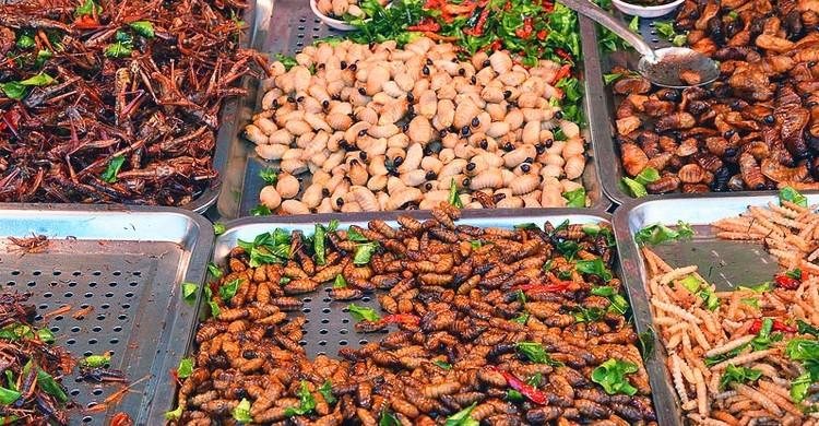 Expositor de larvas en mercado de Krabi. Paul Arps (Flickr)