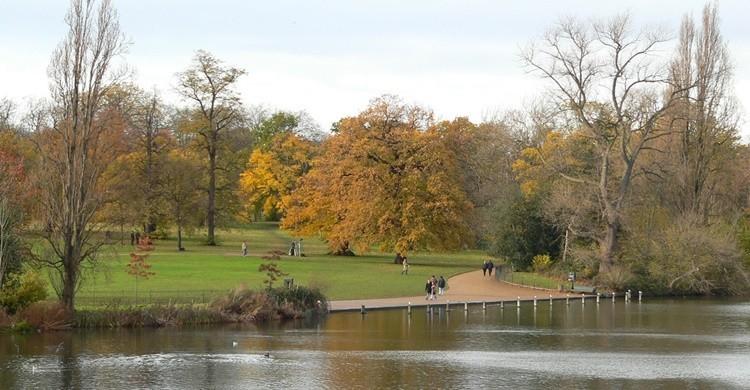 Vista de Hyde Park. S Pakhrin (Flickr)