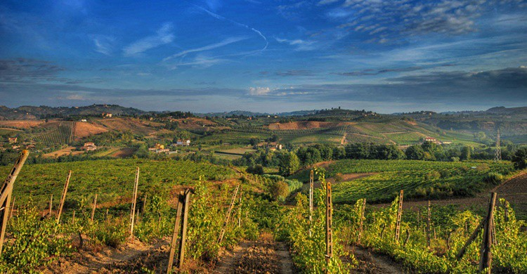 Campos de la comarca de Chianti. Francesco Sgroi (Flickr)