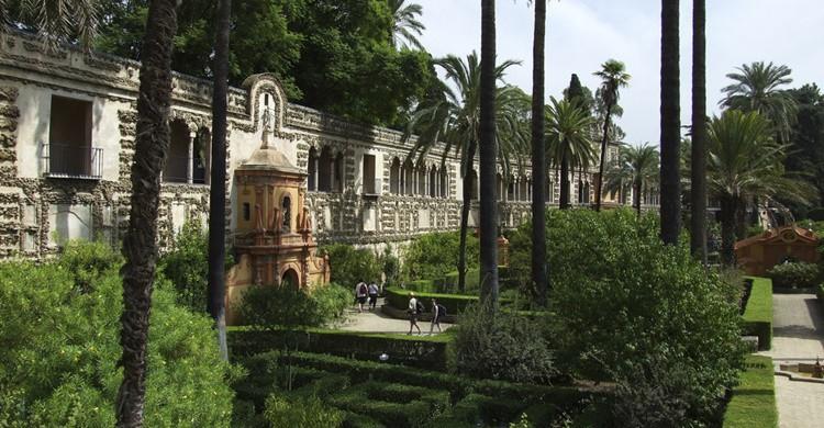 Jardines en los Reales Alcázares. Olaf Bierganns (Flickr)