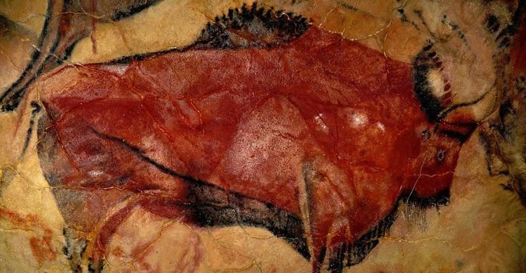 Uno de los bisontes pintados en la cueva de Altamira (Wikimedia.org)