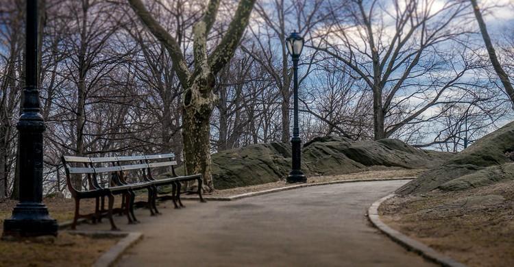 Sendero en Central Park. Eric K Gross, Foter