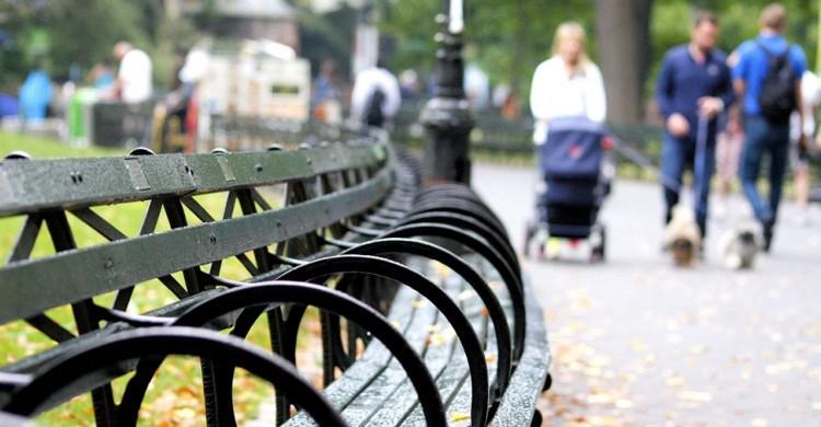 Bancos de Central Park. Phil Roeder, Foter