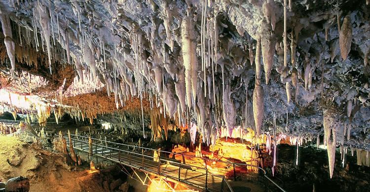 Cueva del Soplao (taquilla.com)