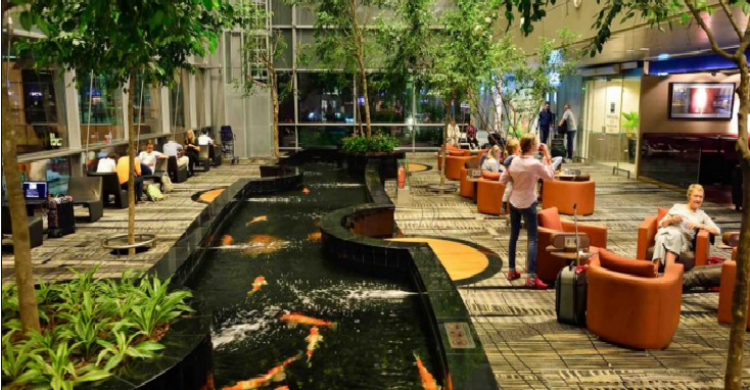 Changi - Sorbis (Shutterstock)