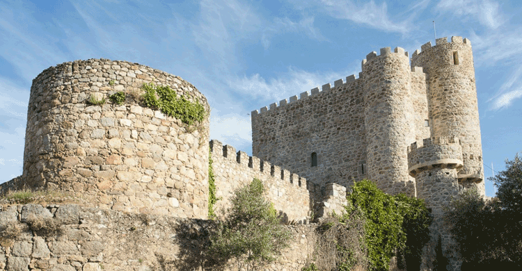 Castillode la Coracera (castillodelacoracera.com)