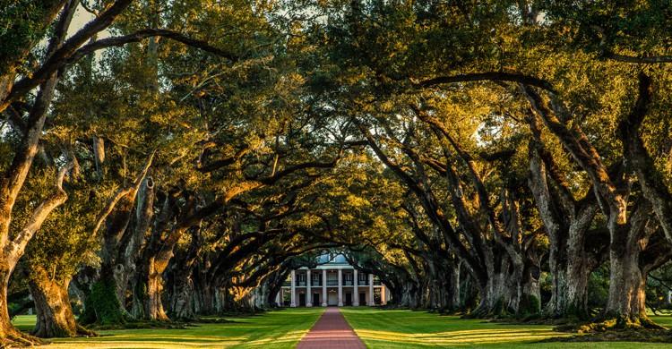 """La película """"12 años de esclavitud"""" se rodó en Nueva Orleans y en otras localizaciones de Luisiana (iStock)"""