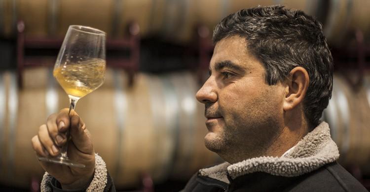 Cata de vinos. Adan Israel (Flickr)