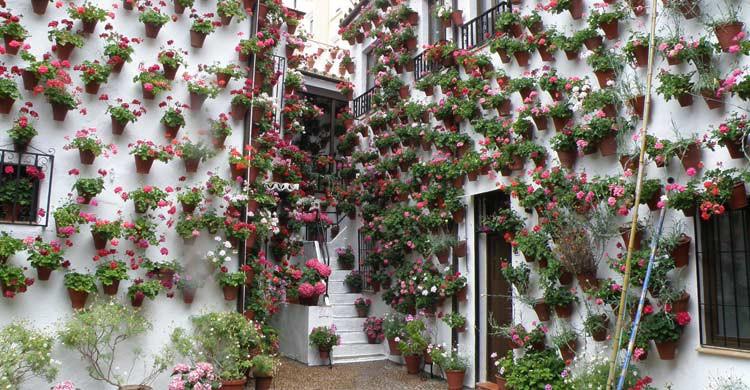 Patio de Córdoba (Wikimedia.org)